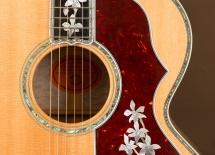 20140619-2k2a6097-guitar-4