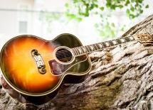 guitarpics102