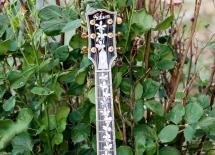 guitarpics110
