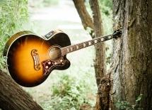 guitarpics50